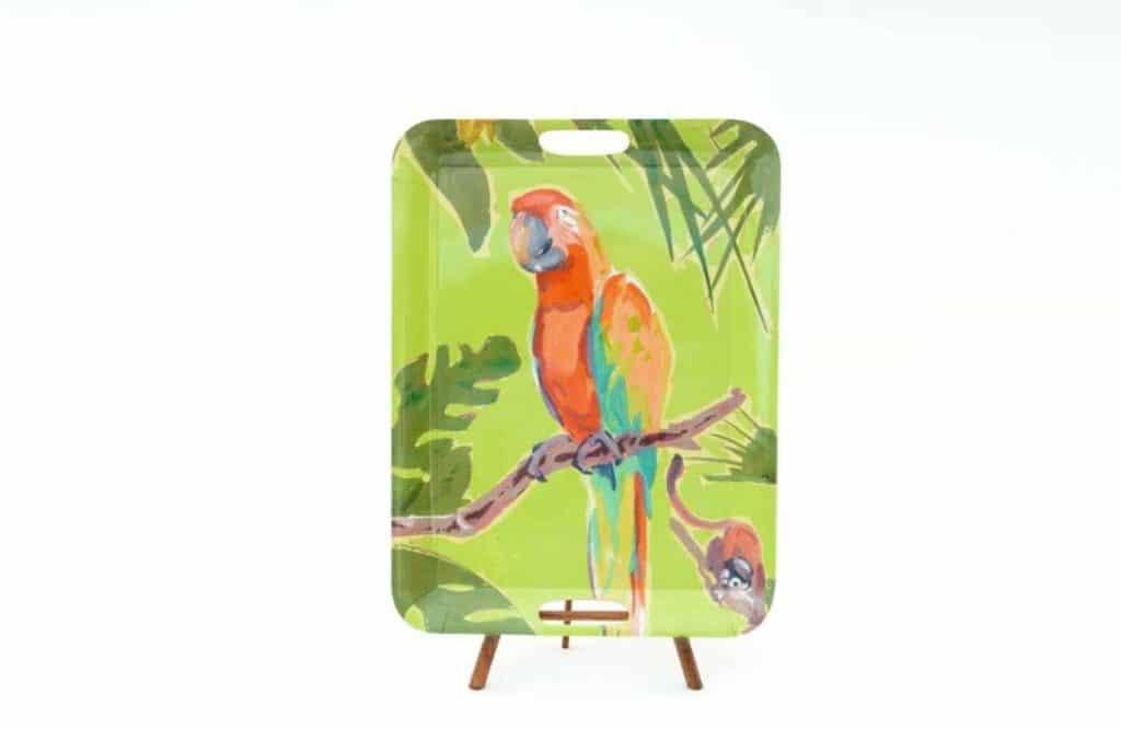 trays melemine parrot